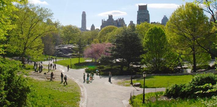 Центральный парк (Нью-Йорк)